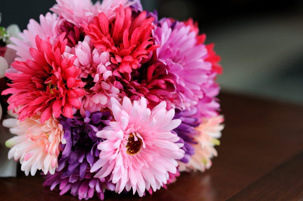 A bunch of Gerbera daisies.